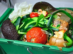 Gerenciamento de resíduos orgânicos e inorgânicos
